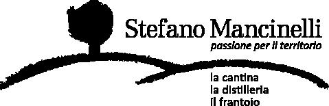 ステファノ・マンチネッリ 画像