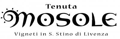 テヌータ・モゾーレ 画像